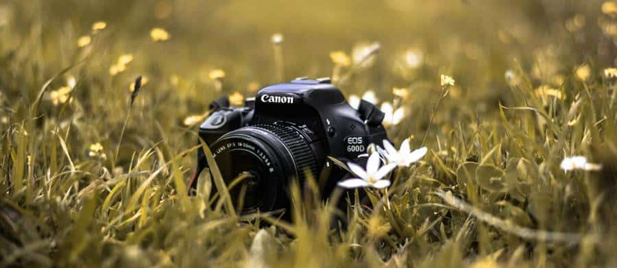 How to Choose a Good Canon Lens?