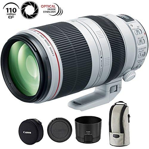 Canon 100-400 mm