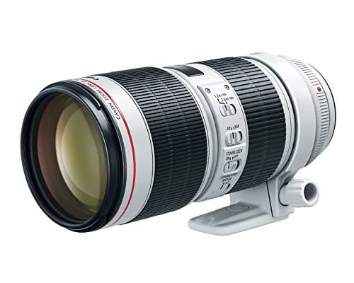 Canon RF 70-200 mm f / 2.8 L IS USM