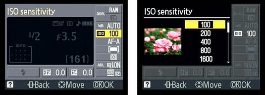 ISO - The Sensitivity of the Camera