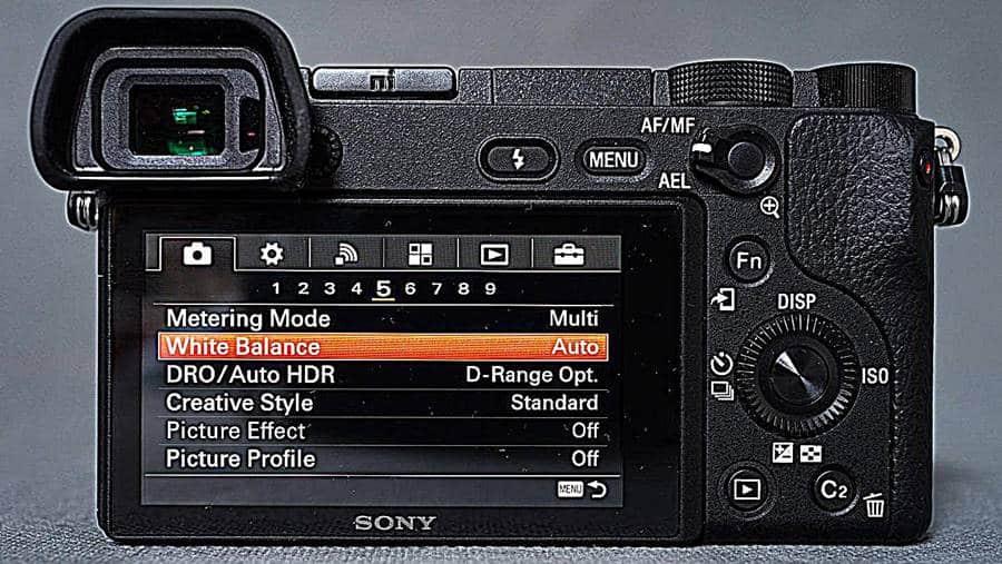 Sony a6300 Screen