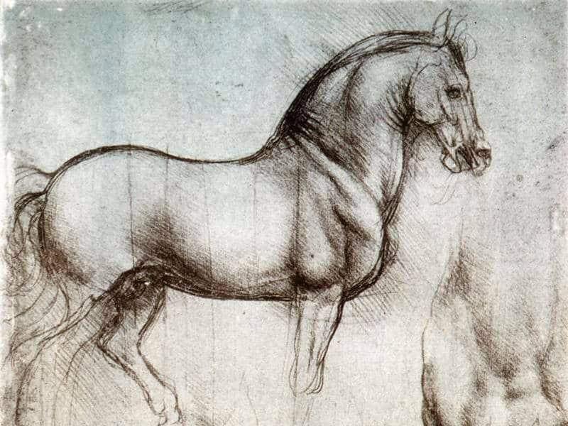 Horse Painting by L. Da Vinci