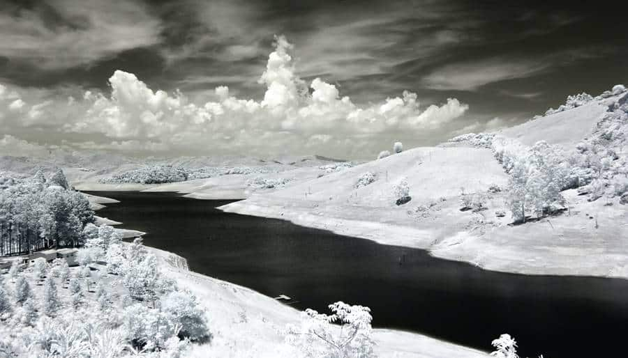 Winter Exposition