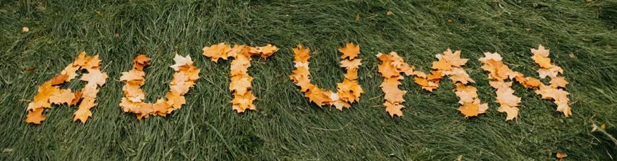 16 Autumn Family Photoshoot Ideas for Stunning Photographs