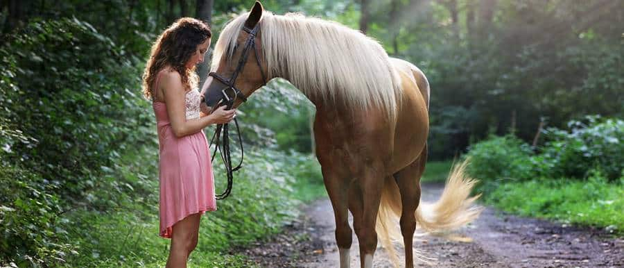 Best Season For A Photoshoot with Horses