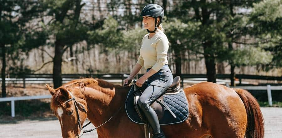 Horse Photoshoot Ideas and Poses