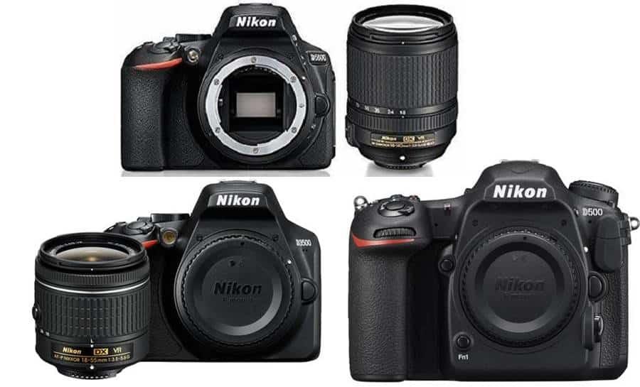 Best Amateur Nikon DSLR Cameras