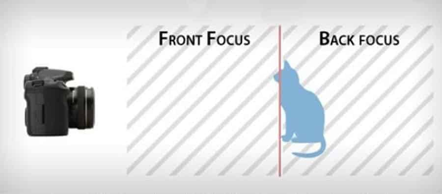 Back and Front Focus (illustrative image)